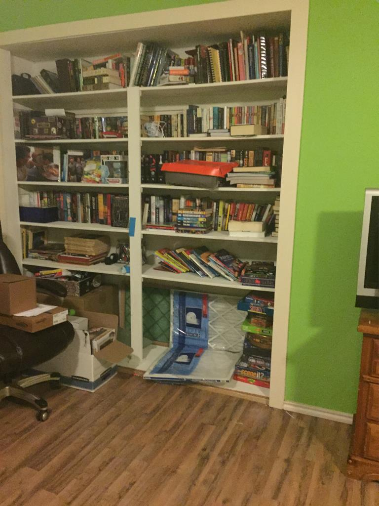 Built In Bookcase in Bedroom #3