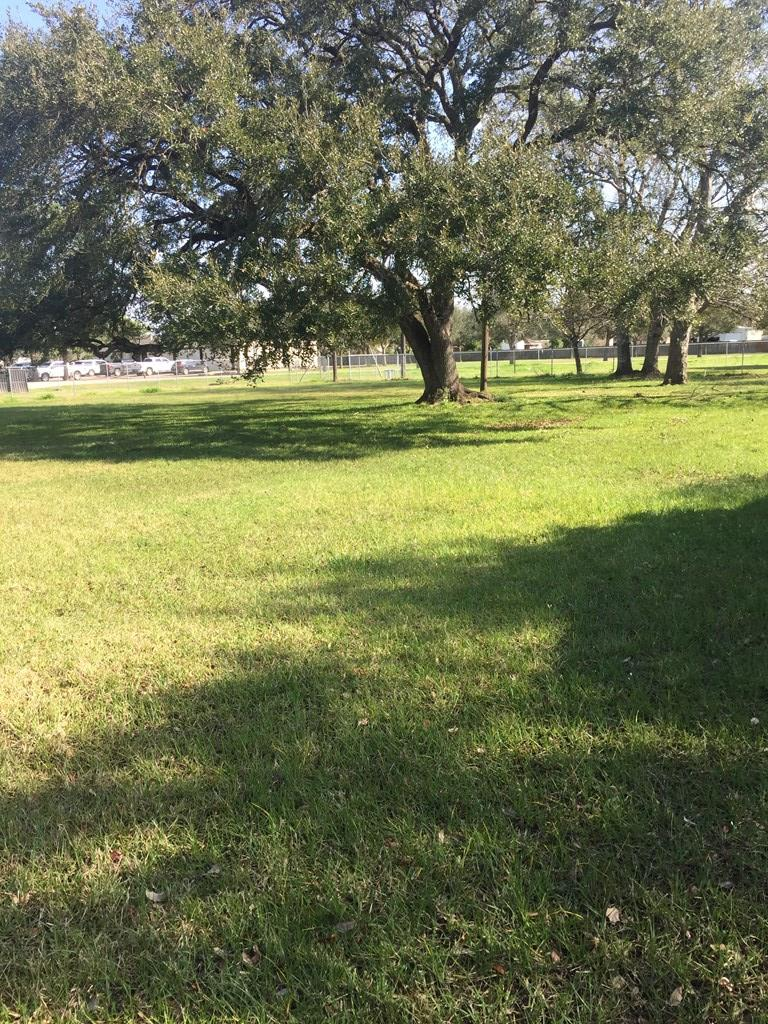 Beautiful, Spacious Lot with Gorgeous Oak Trees